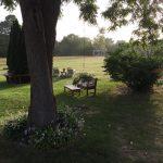 2016 Backyard (4)